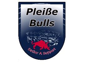 Pleißebulls